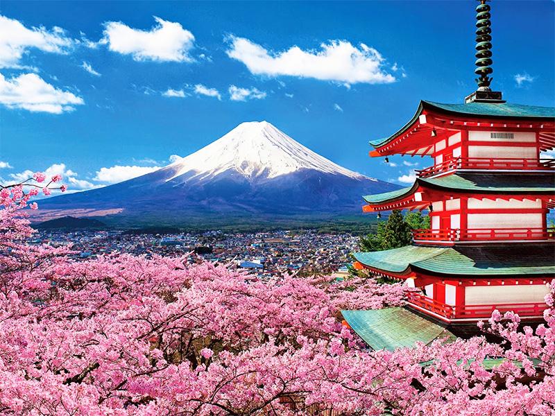 40. [ảnh 1] Tư vấn cách đặt vé máy bay tại Nhật Bản với giá siêu rẻ